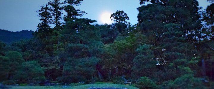 ゴールデンウィーク特別企画 「本当の夕暮れ -初夏-」
