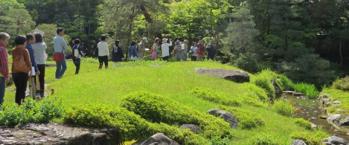 GW特別企画 日本庭園入門ガイド「庭園めぐり」