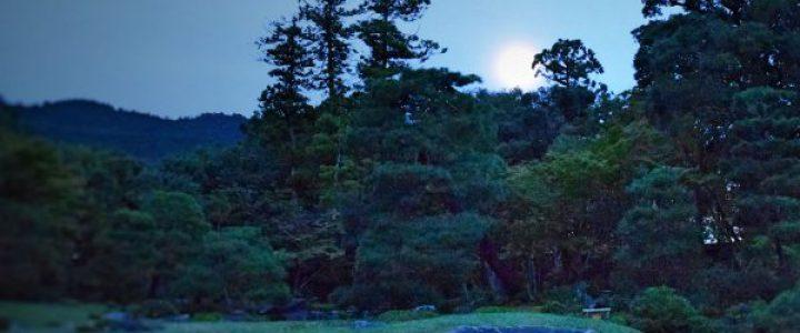 東山の名月をながめる会