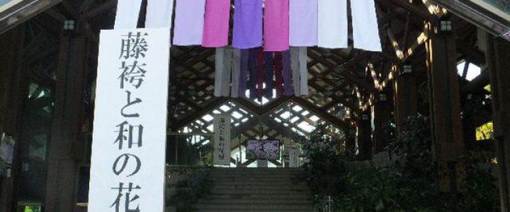 第11回 藤袴と和の花展~万葉の花 令和の花 藤袴~