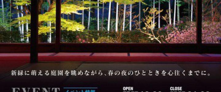 春の夜灯り 京都2019 大原宝泉院