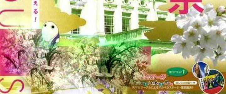 中止☆彡京都府庁旧本館 観桜祭2020
