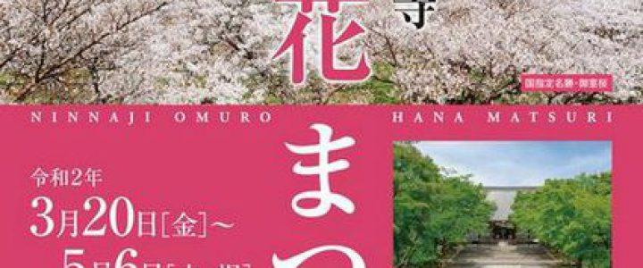 特別入山期間「御室花まつり」☆彡仁和寺