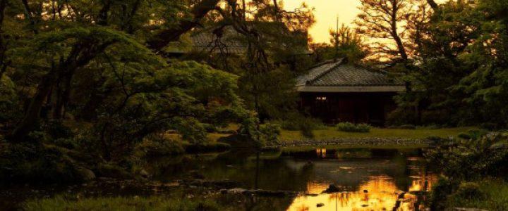 蛍が舞い飛ぶ - トワイライト日本庭園の特別鑑賞