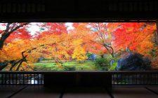 秋の特別拝観【宝厳院】