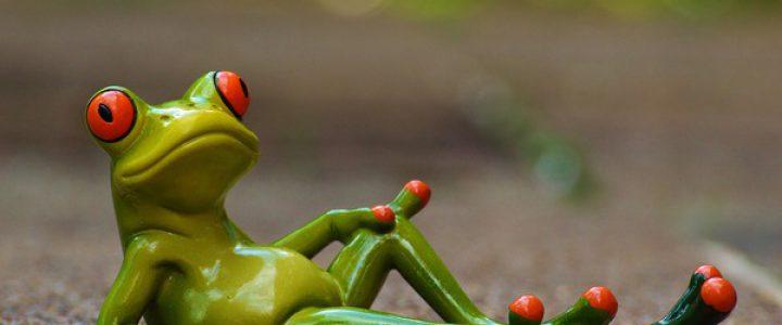 怪異のカエルはガマガエル(その3)