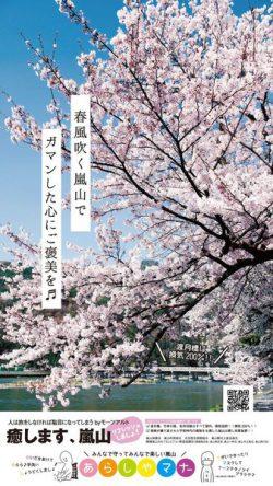 桜咲き、癒します、嵐山。