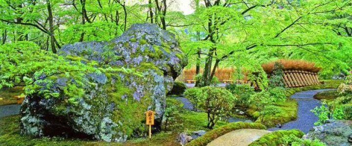 宝厳院 春の特別拝観