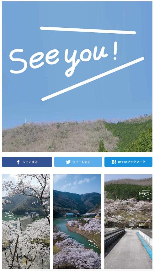 美山 大野ダムさくら祭り【中止】