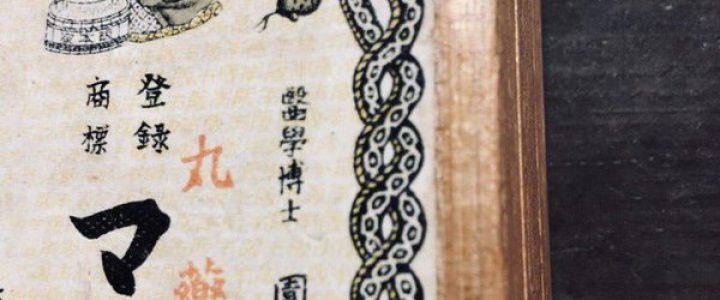 ヘビがニョロニョロ(その8・完結編)