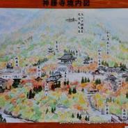 紅葉 神護寺