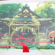 夏越祓 茅の輪くぐり 護王神社