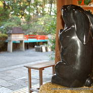 初詣 狛兎  岡崎神社