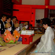祇園祭 生稚児結納の儀 稚児社参  綾傘鉾