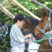 春祭 藤森祭 駈馬神事  藤森神社