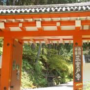 観蓮 花の寺 三室戸寺