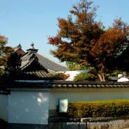 紅葉 紅葉狩 花暦 東福寺 同聚院