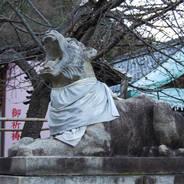 狛犬巡り  法輪寺 虚空蔵菩薩