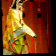 蛍狩り 蛍火の茶会  下鴨神社 神服殿
